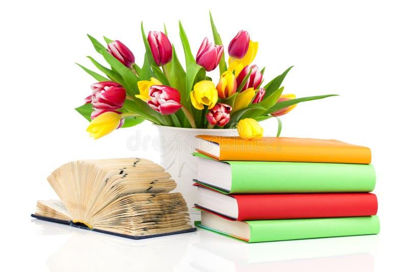 Grupp av vårtulpan och böcker, fotografering för bildbyråer