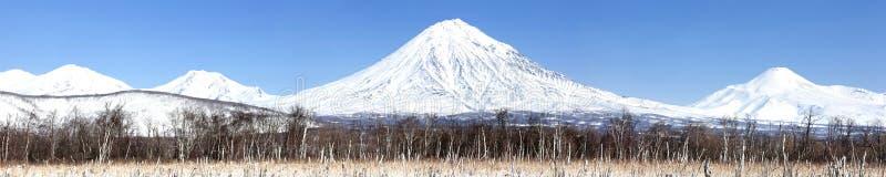 Grupp av volcanoes Koryaksky, Avachinsky, Kozelsky arkivbilder