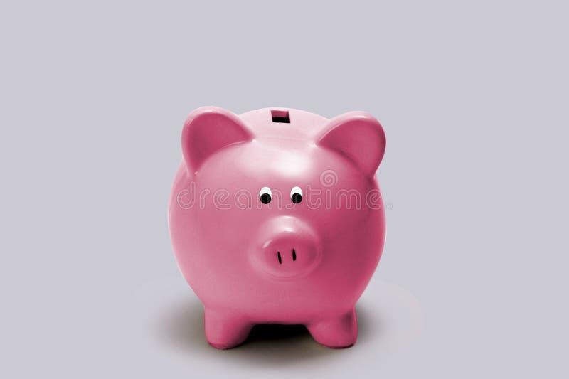 grupp little piggy pink arkivfoton