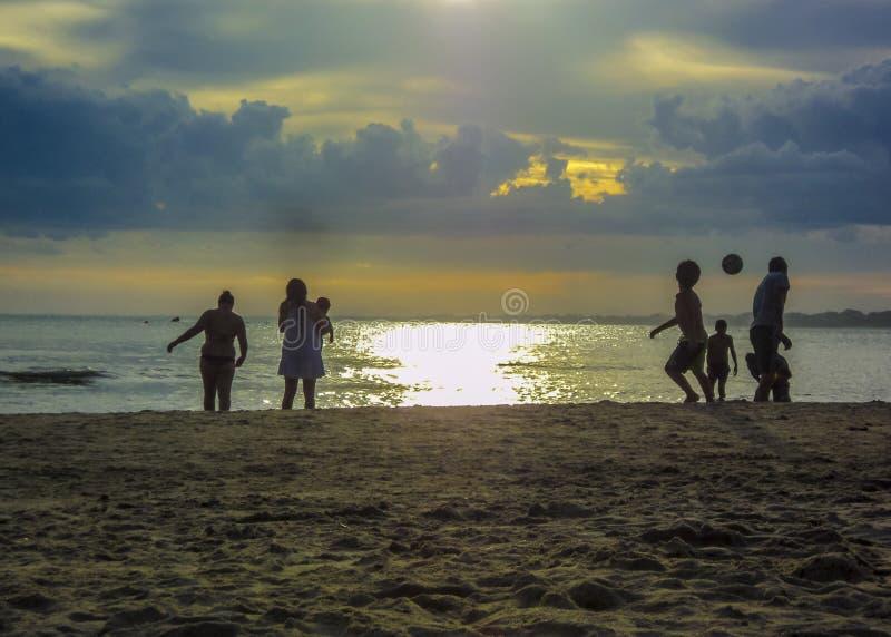 Grupp människor på stranden royaltyfri fotografi