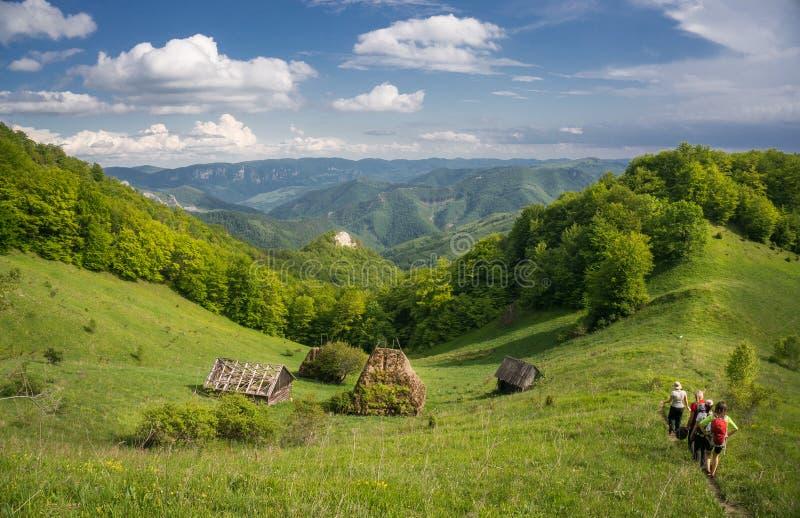 Grupp människor som fotvandrar i ett lantligt bergområde i Rumänien royaltyfria foton