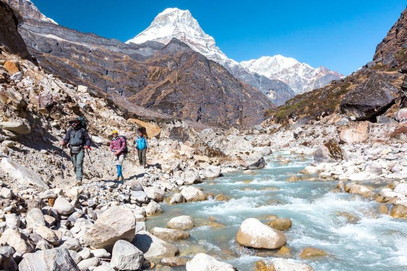 Grupp människor som går på trek längs den lösa bergfloden fotografering för bildbyråer