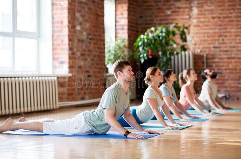 Grupp människor som gör yogakobran, poserar på studion royaltyfria bilder