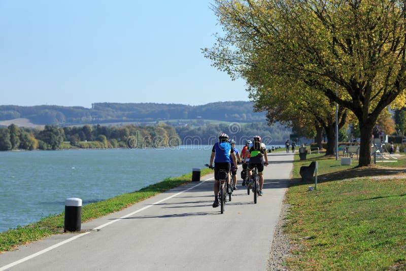 Grupp människor som rider cyklar längs Danubet River Lägre Österrike royaltyfri bild