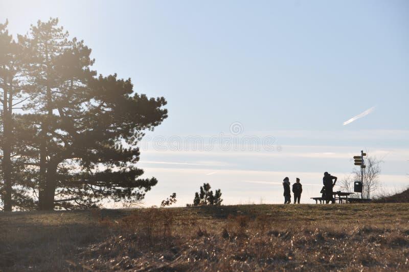 Grupp m?nniskor p? framtidsutsiktstolpen p? berg?verkant royaltyfri foto