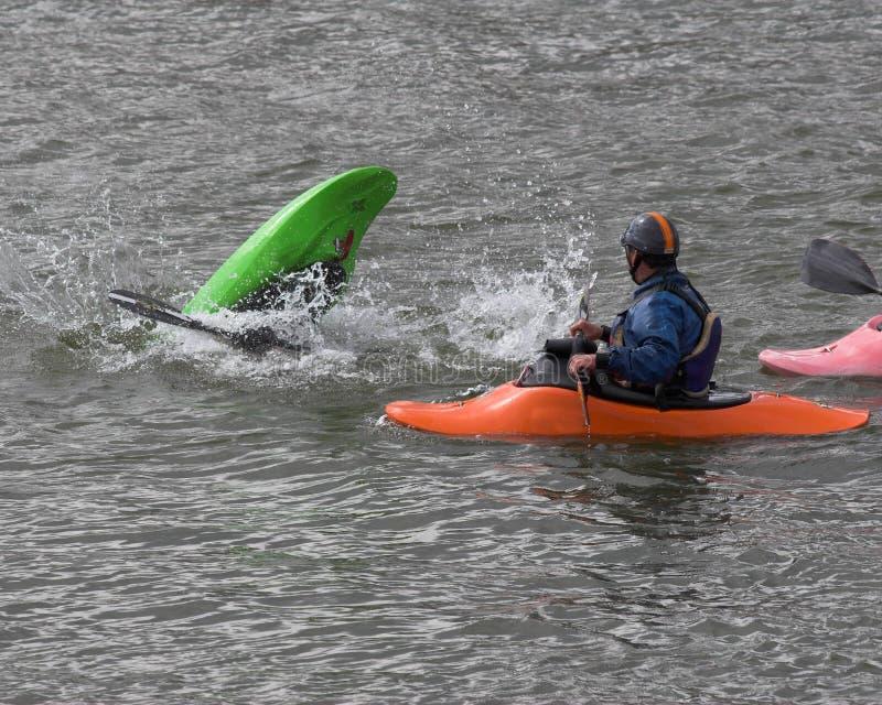 grupp som kayaking royaltyfri bild