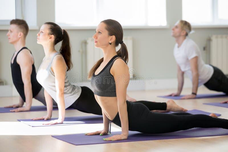 Gruppe übendes Yoga der jungen Leute, aufwärts Einfassungshund tuend lizenzfreies stockbild