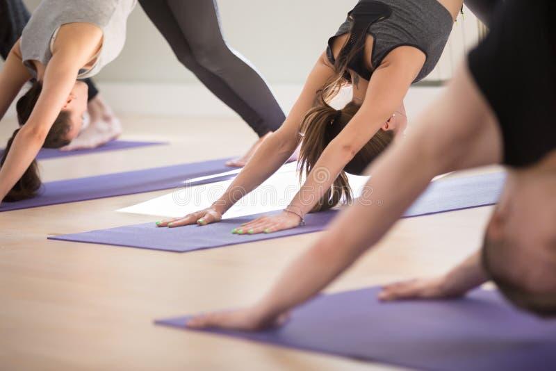Gruppe übendes Yoga der sportlichen Leute, das abwärtsgerichtete Handeln tun lizenzfreie stockbilder
