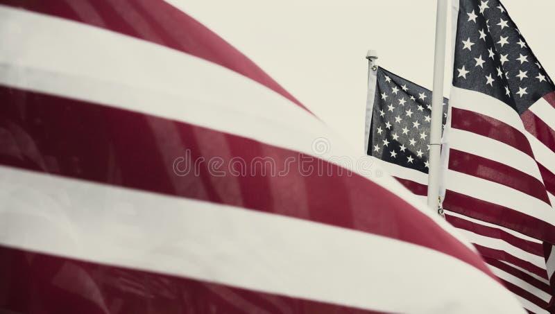 Gruppe amerikanische Flaggen in Haymarket, Virginia auf Memorial Day lizenzfreie stockfotografie