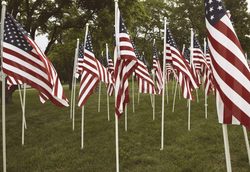Gruppe amerikanische Flaggen in Haymarket, Virginia auf Memorial Day lizenzfreie stockbilder