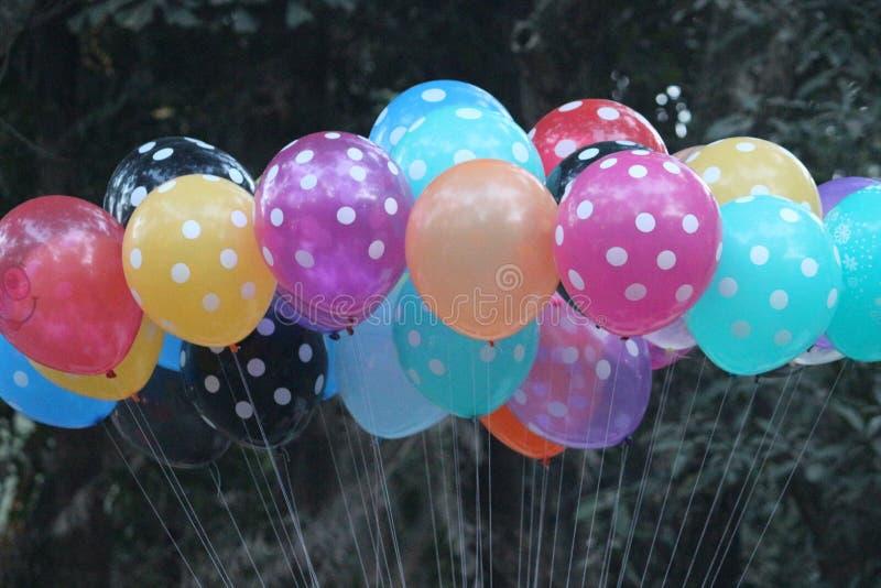 Gruppe bunte Ballone zusammen gebunden stockfotos