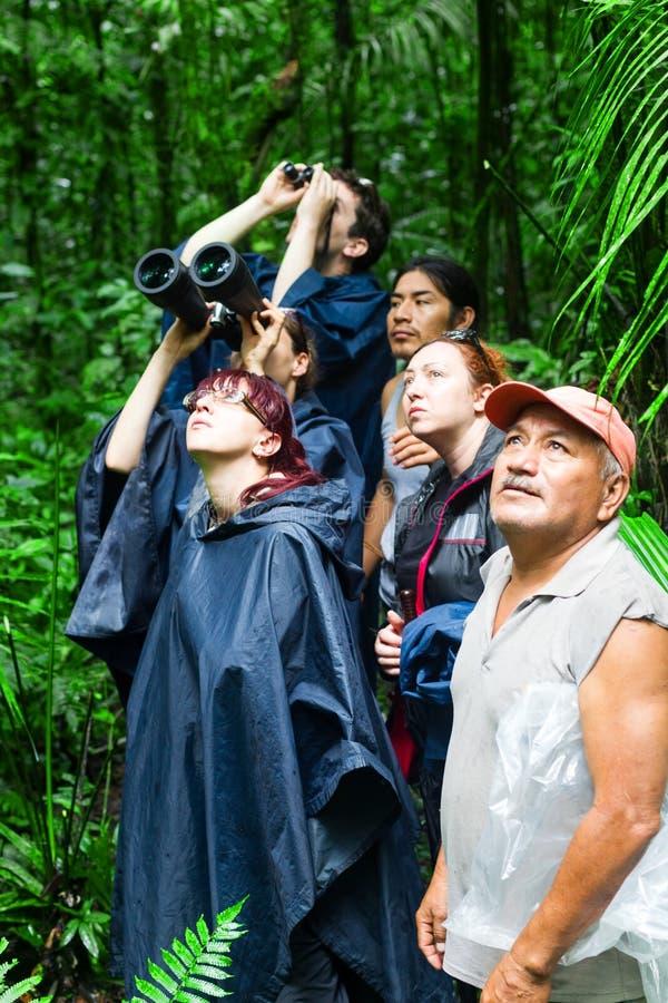 Gruppe der Beobachtung der Touristen-wild lebenden Tiere in Amazonas-Gebiet stockbilder