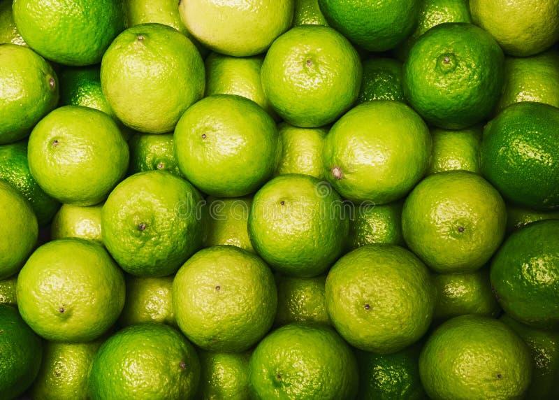 Gruppe der frischen grünen Kalkzitrusfrucht lizenzfreies stockfoto