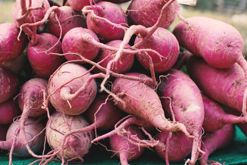 Gruppe der frischen Süßkartoffel stockfotos