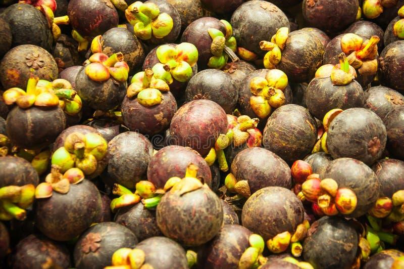 Gruppe der Mangostanfrucht lizenzfreies stockfoto
