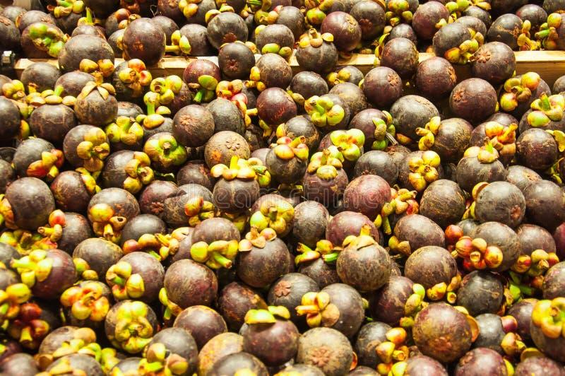 Gruppe der Mangostanfrucht stockfotos