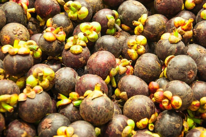 Gruppe der Mangostanfrucht stockfoto