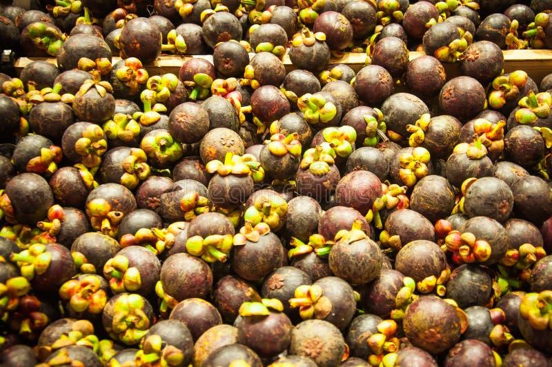 Gruppe der Mangostanfrucht stockbilder