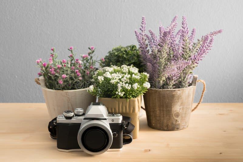 Gruppe des Blumentopfes und der Retro- Kamera stockfoto