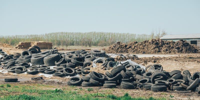 Gruppe des Gebrauchtwagens und des LKWs ermüdet im schmutzigen Umweltschrottplatz stockfotos