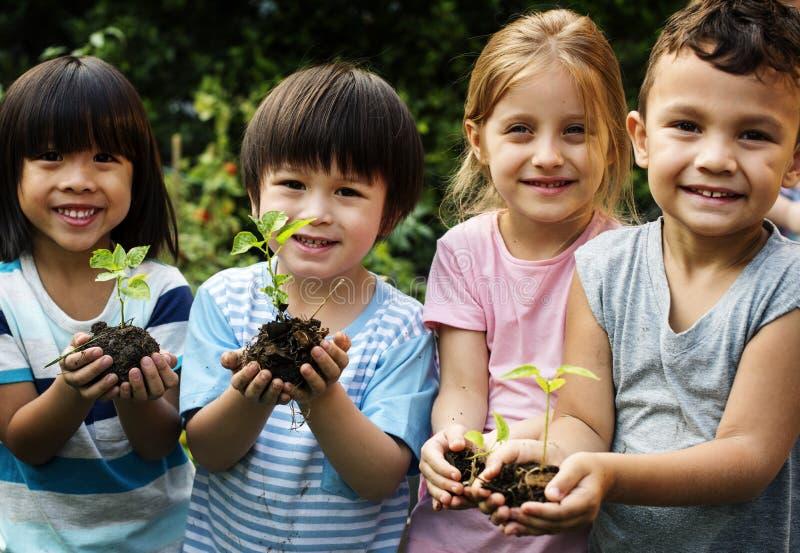 Gruppe des Kindergartens scherzt die Gartenarbeitlandwirtschaft der Freunde stockbild