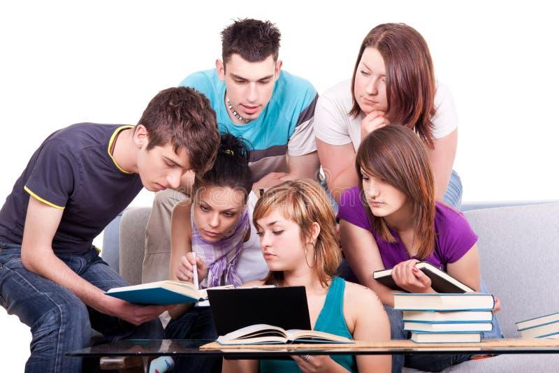Gruppe des Kursteilnehmerstudierens stockfoto