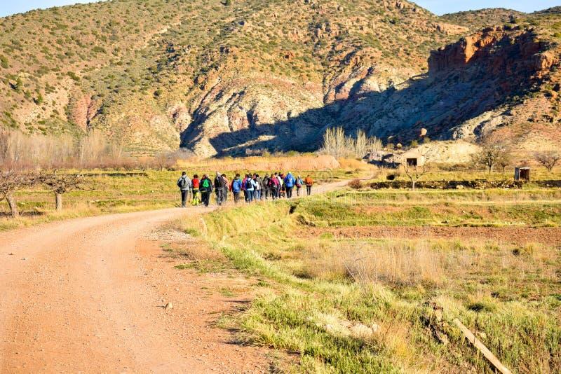 Gruppe erwachsene Leute mit buntem Rucksacktrekking auf einem Weg des Sandes und der Steine an gehend zum Berg mit einer erstaunl lizenzfreies stockbild