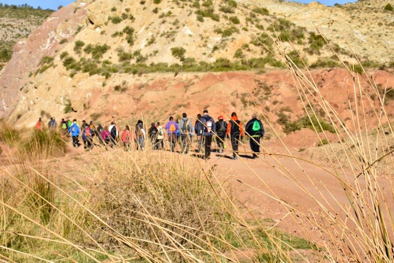 Gruppe erwachsene Leute mit buntem Rucksacktrekking auf einem Weg des Sandes und der Steine an gehend zum Berg mit einer erstaunl lizenzfreie stockfotografie