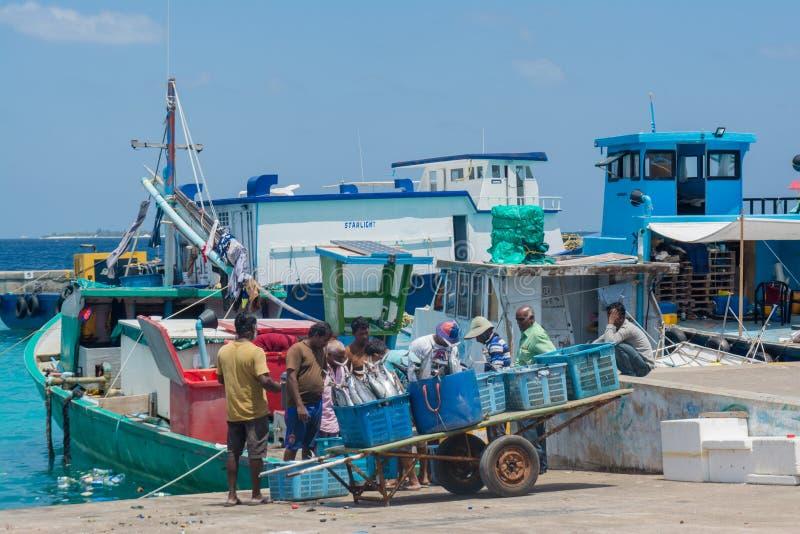 Gruppe Fischer an den Hafenladenfischen in den Körben stockfotografie