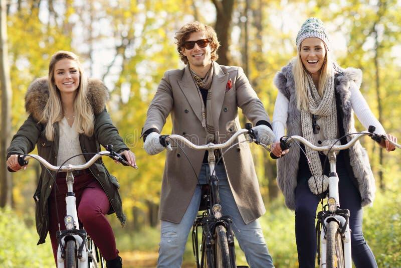 Gruppe Freunde auf Fahrrädern im Wald während der Abfallzeit stockfoto
