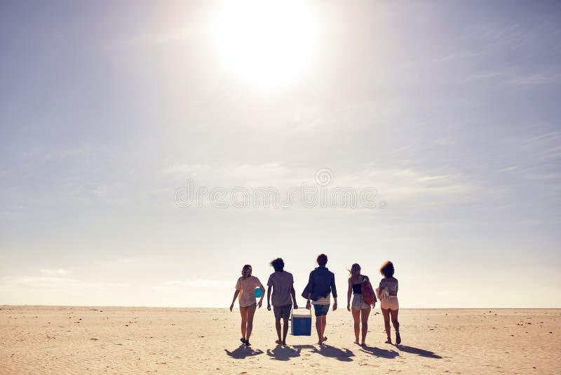 Gruppe Freunde auf Strandferien stockfoto