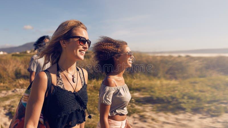 Gruppe Freunde auf Strandferien stockfotos