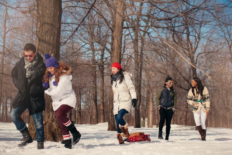 Gruppe Freunde, die einen Schlitten im Schnee im Winter ziehend genießen stockbilder