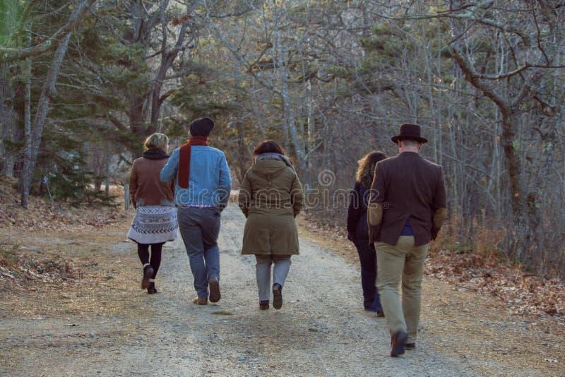 Gruppe Freunde, die im Wald geschossen von hinten schlendern stockfoto