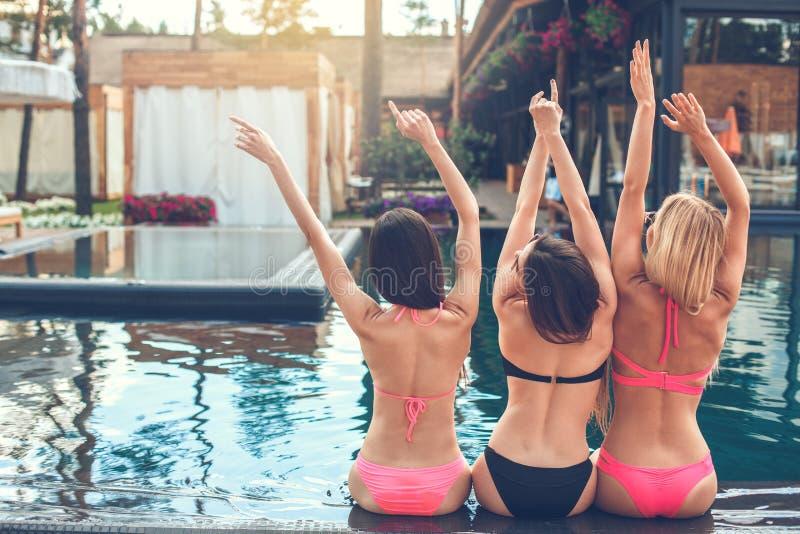 Download Gruppe Freunde Zusammen In Der Swimmingpoolfreizeit Stockfoto - Bild von pool, freizeit: 96929130