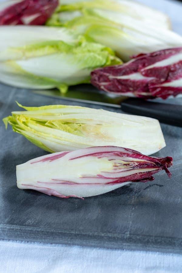Gruppe frische grüne belgische Winterendivie oder Zichorie und rotes Radicchiogemüse, alias witlof salade lizenzfreie stockfotos