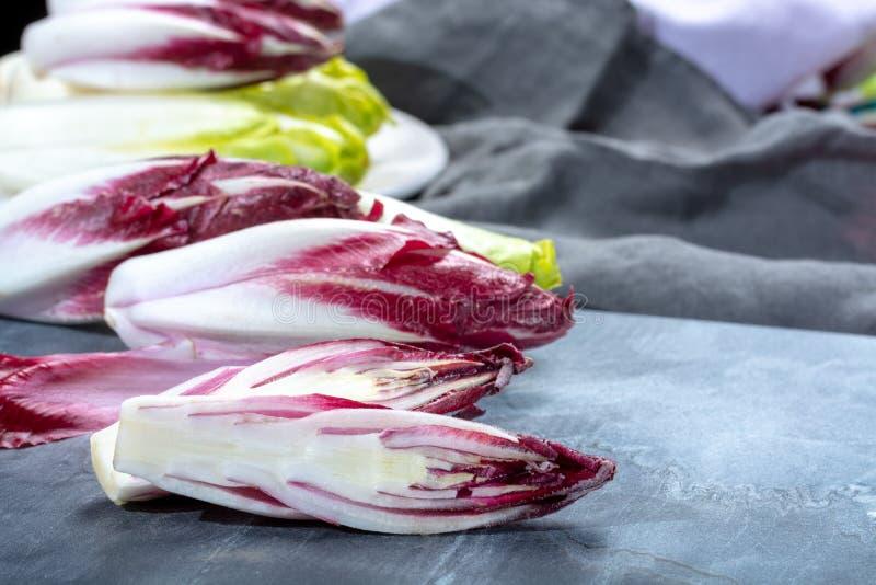 Gruppe frische grüne belgische Winterendivie oder Zichorie und rotes Radicchiogemüse, alias witlof salade lizenzfreies stockbild