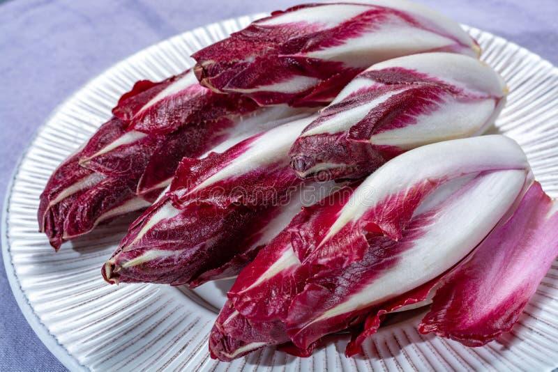 Gruppe Gemüse der frischen roten Radicchiozichorie oder der belgischen Winterendivie, alias witlof salade stockbild