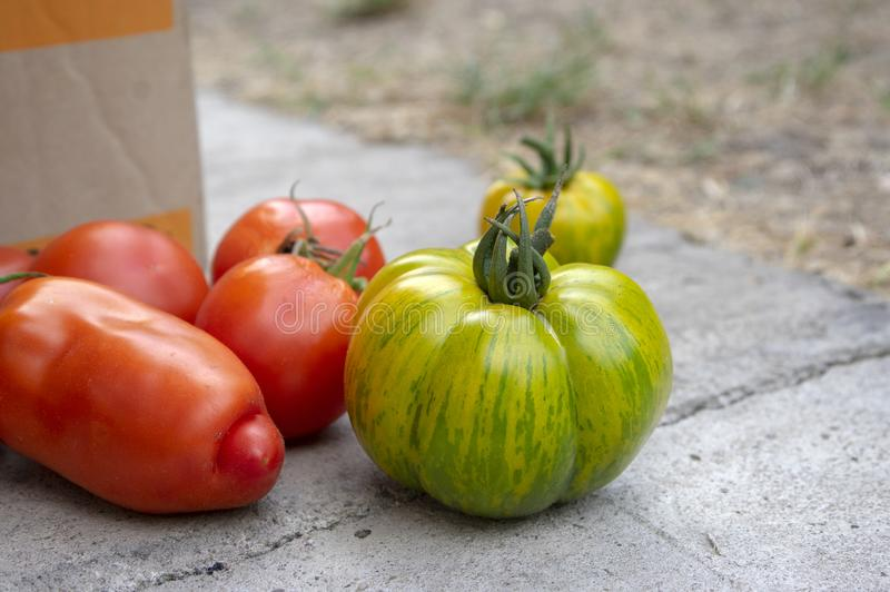 Gruppe gereifte Tomaten in zwei Kasten-, Roten und Grünenfrüchten nach Ernte, essfertig, Pfeffer und grünen Zebratomaten stockbild