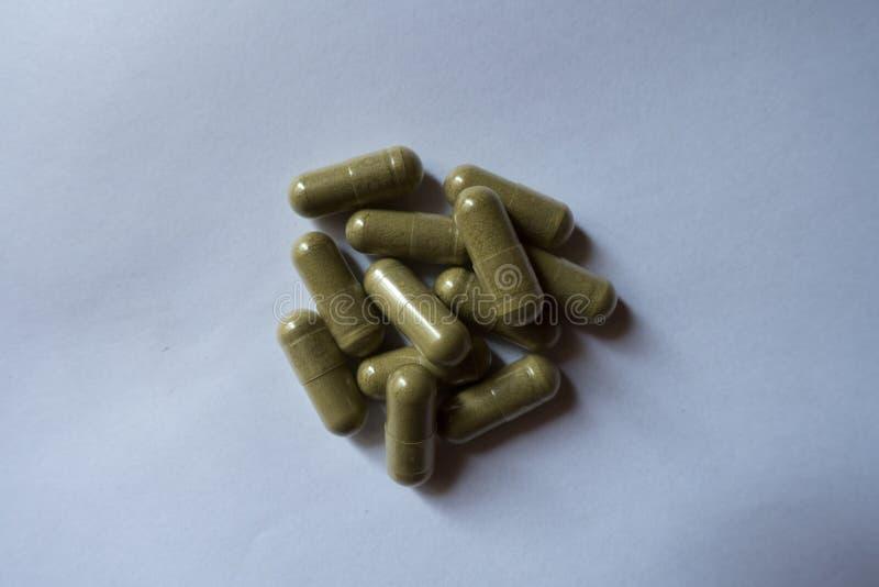 Gruppe grüne Moringa-Kapseln lizenzfreie stockfotografie