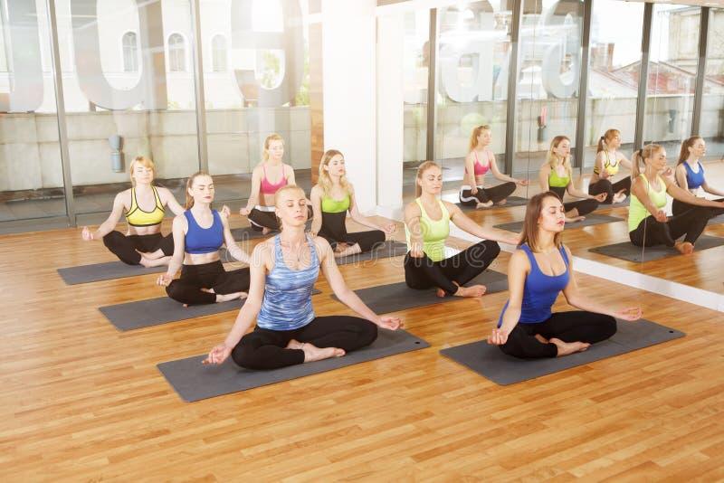Gruppe junge Frauen in der Yogaklasse, Meditation lizenzfreies stockbild
