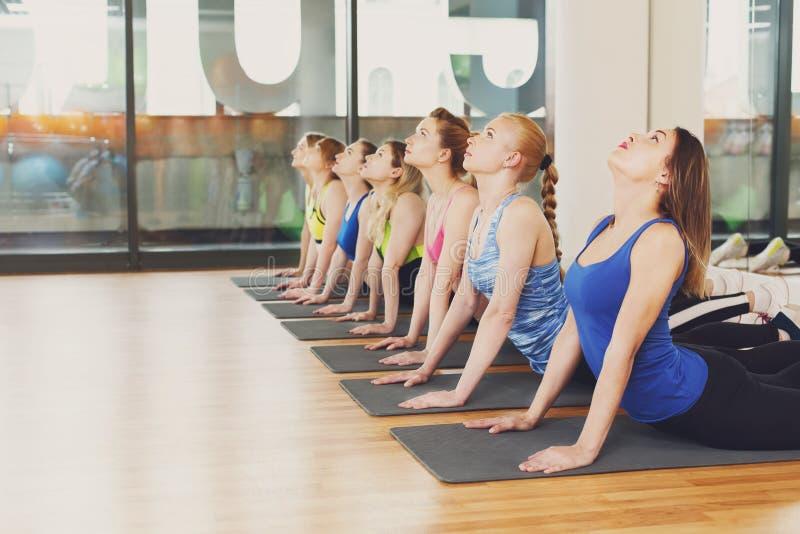 Gruppe junge Frauen in der Yogaklasse, Rückseitenausdehnen stockfoto