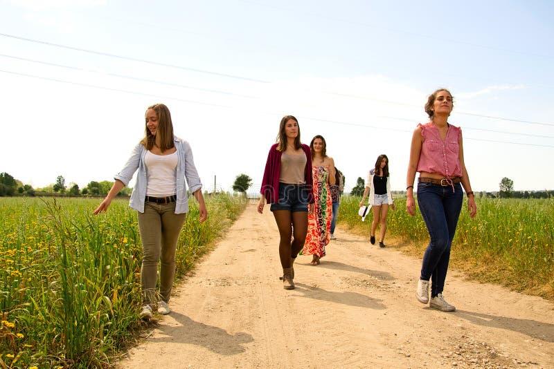 Gruppe junge Frauen, die auf ein Feld von Wildflowers gehen lizenzfreies stockbild