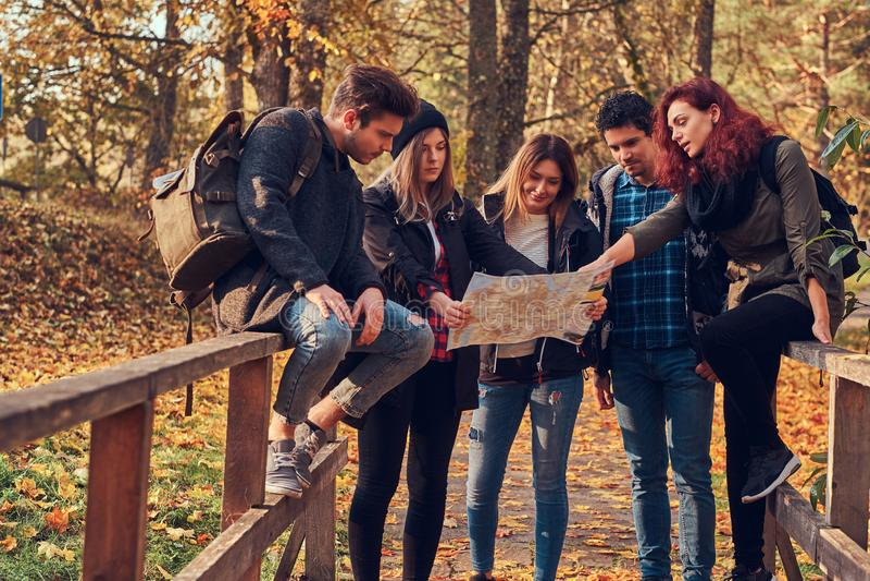 Gruppe junge Freunde, die im bunten Wald des Herbstes wandern, Karte betrachten und Wanderung planen lizenzfreie stockbilder