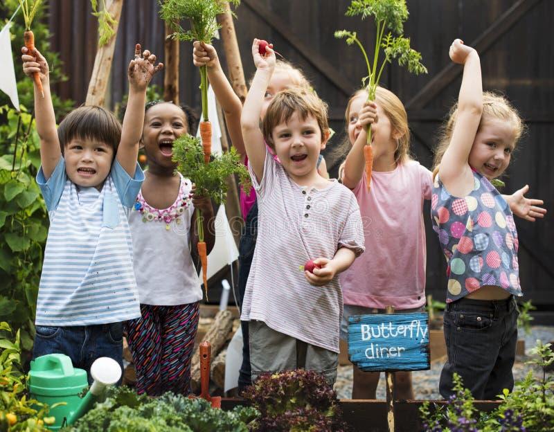 Gruppe Kindergartenkinder, die draußen im Garten arbeiten lernen lizenzfreie stockfotos