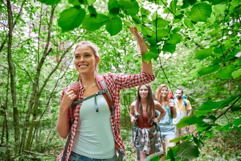 Gruppe lächelnde Freunde mit dem Rucksackwandern lizenzfreie stockfotografie