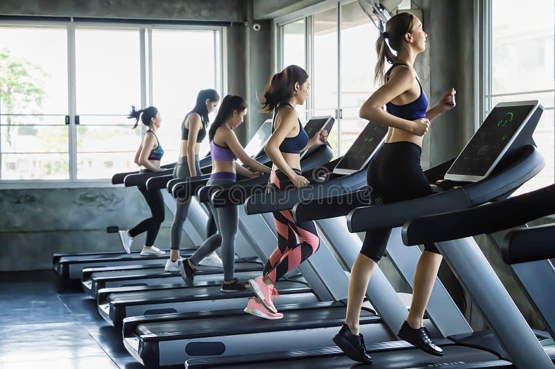 Gruppe Leute der jungen Frauen, die auf Tretmühlen in der modernen Sportturnhalle laufen lizenzfreies stockbild