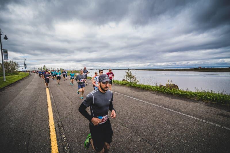 Gruppe Marathoners gleich nach der Anfangszeile stockfotos