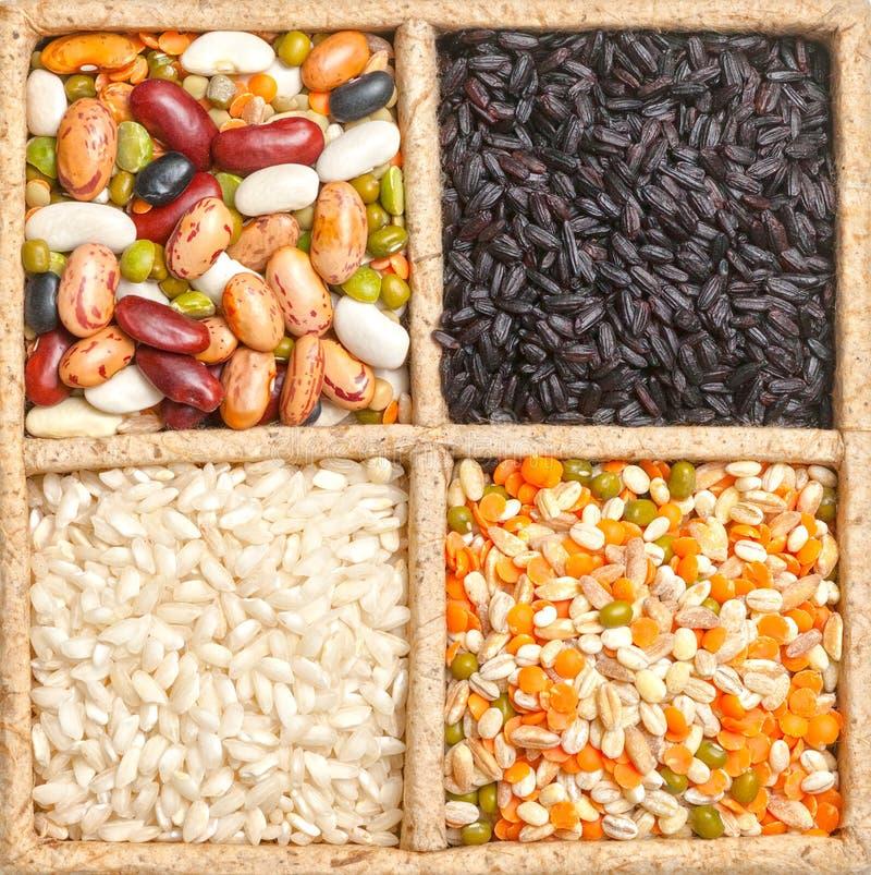 Gruppe Reis, Bohnen und Linsen lokalisiert auf weißem Hintergrund lizenzfreie stockfotografie