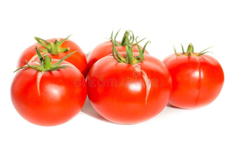 Gruppe roter frischer Tomaten stockbild